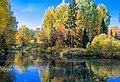 Осенний дендропарк1.jpg