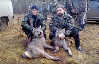 Охота в Тульской области (волк).png