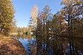 Парк Сергиевка. Оранжерейный пруд осенью..jpg