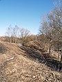 Переславль-Залесский, ул. Валовое кольцо 2008 г.jpg
