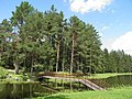 Рубенский парк Rubenes parks (21) - panoramio.jpg