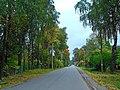 Улица Стахановская в Новосиверской.JPG