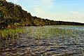 Шацькі озера 1.jpg