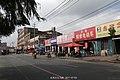 上世纪初曾经繁华的商业区-大马路(新京商埠大马路) - panoramio.jpg