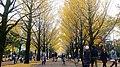 光が丘 Tokyo, Japan Sigma 35mm Canon 6D (30879503534).jpg