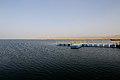 博斯腾湖阿訇口 - panoramio (3).jpg