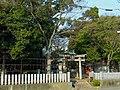 堺市美原区大保 広国神社 Hirokuni-jinja 2012.3.03 - panoramio (1).jpg
