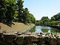 彦根城 (滋賀県彦根市金亀町) - panoramio - gundam2345 (3).jpg
