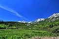 栂池自然園 - panoramio (4).jpg