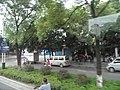 桂林市街道景色 - panoramio (102).jpg