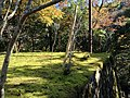 槙尾山西明寺 - panoramio (1).jpg