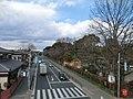 羽村市動物公園前 - panoramio.jpg