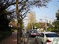 青山墓地中央 - panoramio.jpg
