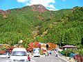 高の瀬峡 駐車場 - panoramio.jpg