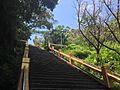 鶯歌碧龍宮樓梯1.jpg