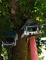 ... Bird House - panoramio.jpg
