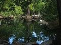 01-119-5004 Алупкинський парк.jpg
