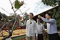 11.10 副總統「金漢柿餅教育農園」 (50585434413).jpg