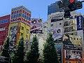 11 8 2020 Akihabara.jpg
