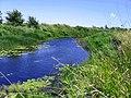 1315. Река Савала.jpg