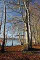 14-12-28-Werbellinsee-RalfR-DSCF6294-27.jpg