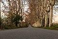 17-12-03-Cerdanyola-RalfR-DSCF0619.jpg