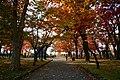 171103 Morioka Castle Morioka Iwate pref Japan06n.jpg