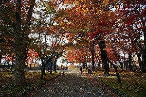 Morioka Castle - Honmaru