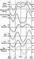 1911 Britannica - Atmospheric Electricity - Diurnal Variation.png