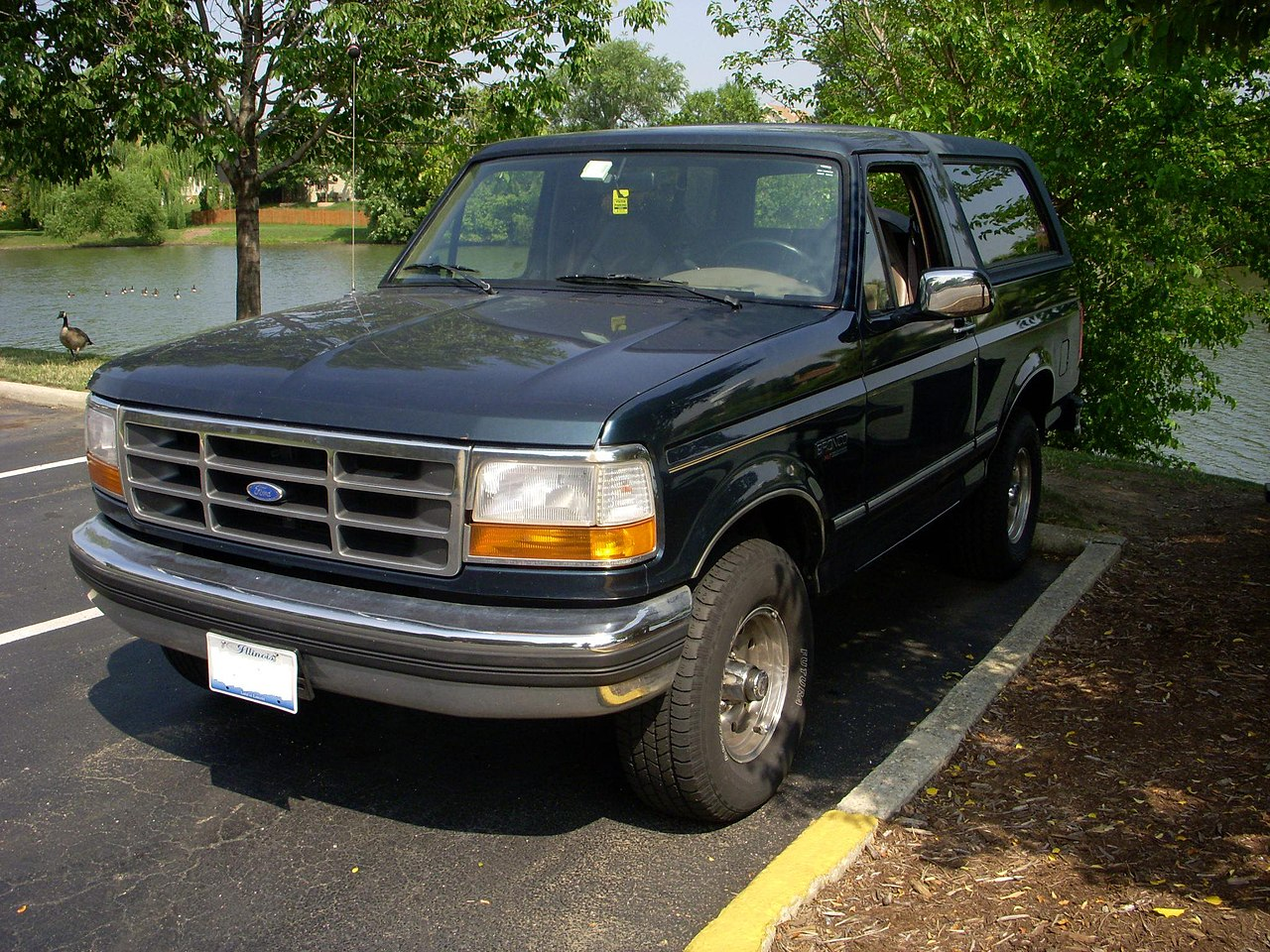 File 1995 Ford Bronco Xlt Jpg Wikimedia Commons