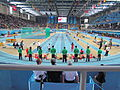 2012 IAAF World Indoor by Mardetanha2921.JPG