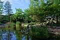 20190502 Ogród Japoński na Wyspie Małgorzaty w Budapeszcie 0804 1955 DxO.jpg