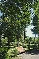 21-212-5011 Виноградів, парк.jpg