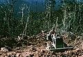 3rdMarineDivisionVietnam1968.JPEG
