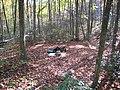 4773002 20071031 1368 Wildcat Rdg Tr Campsite -3002 (32813386673).jpg