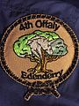 4th Offaly Edenderry Group Badge 2013.jpg