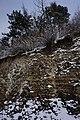 61-255-5010 відслонення девону в місті Чорткові.jpg