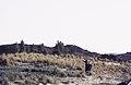 ASC Leiden - van Achterberg Collection - 16 - 02 - Deux femmes dans un paysage d'herbe jaune - Ahaggar, Algérie - Avril 1991.jpg