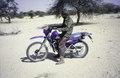 ASC Leiden - van Achterberg Collection - 1 - 211 - Un Touareg à moto, un collègue de la GTZ (Deutsche Gesellschaft für Technische Zusammenarbeit GmbH), une agence d'aide allemande - Tin Aicha, Tombouctou, Mali - 9-29 novembre 1996.tiff