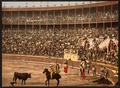 A bull fight, Barcelona, Spain-LCCN2001699358.tif