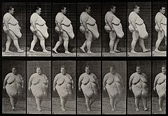 A gargantuan woman walking. Collotype after Eadweard Wellcome V0048623.jpg