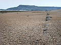 A line of concrete on Chesil Beach - geograph.org.uk - 1329705.jpg