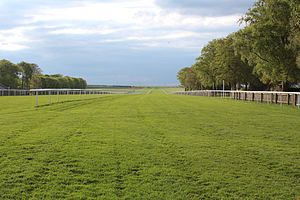 Newmarket Racecourse - A view of The July Course track, Newmarket, UK