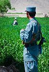 Afghan tip helps ANP and 2SCR platoon prevent rocket attack DVIDS391571.jpg