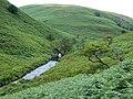 Afon Doethie, Ceredigion - geograph.org.uk - 511580.jpg