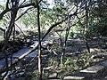 Aguas termales - panoramio.jpg
