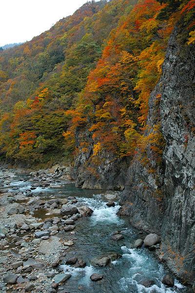 Image:Akiyamago 2005 002.jpg