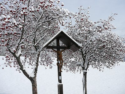 Trees and crucifix in Dobbiaco-Toblach, South Tyrol