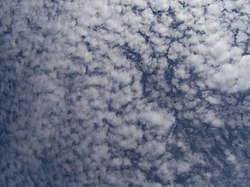 Image illustrative de l'article Altocumulus