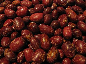 Pinto bean - Alubia pinta alavesa, a red pinto bean native to Añana, Spain